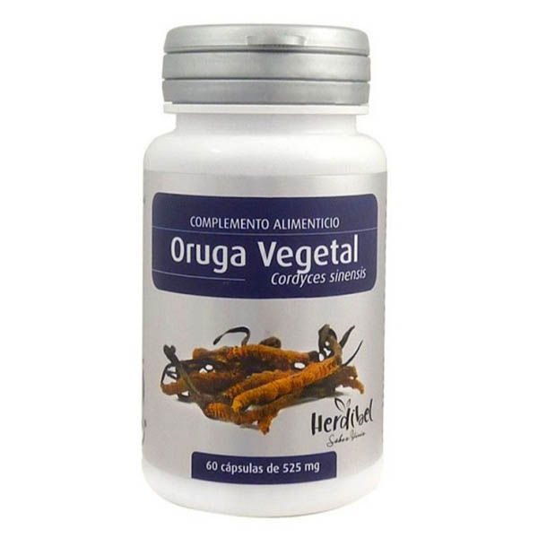 ORUGA VEGETAL (Cordyceps sinensis) (60 cápsulas)