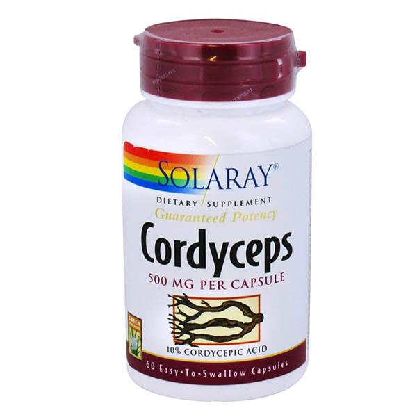 CORDYCEPS (60 cápsulas)